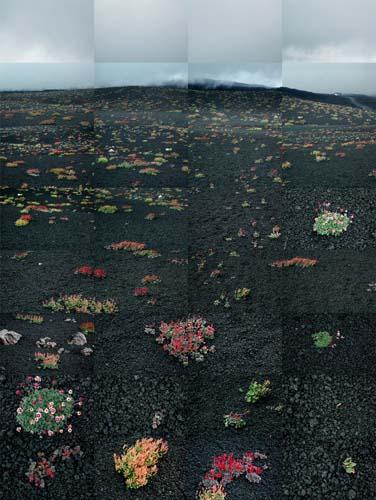 Etna-lg.jpg