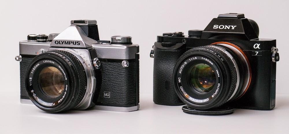 OM-vs-A7r.jpg