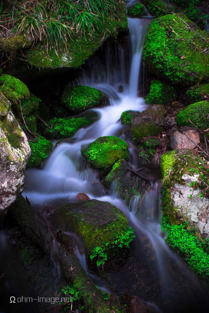 Small spring near the main falls