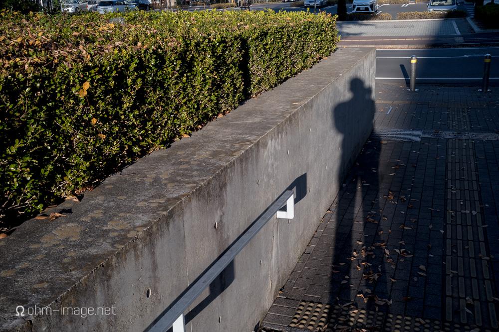 Voigtlander 40 1.2 selfie-1.jpg
