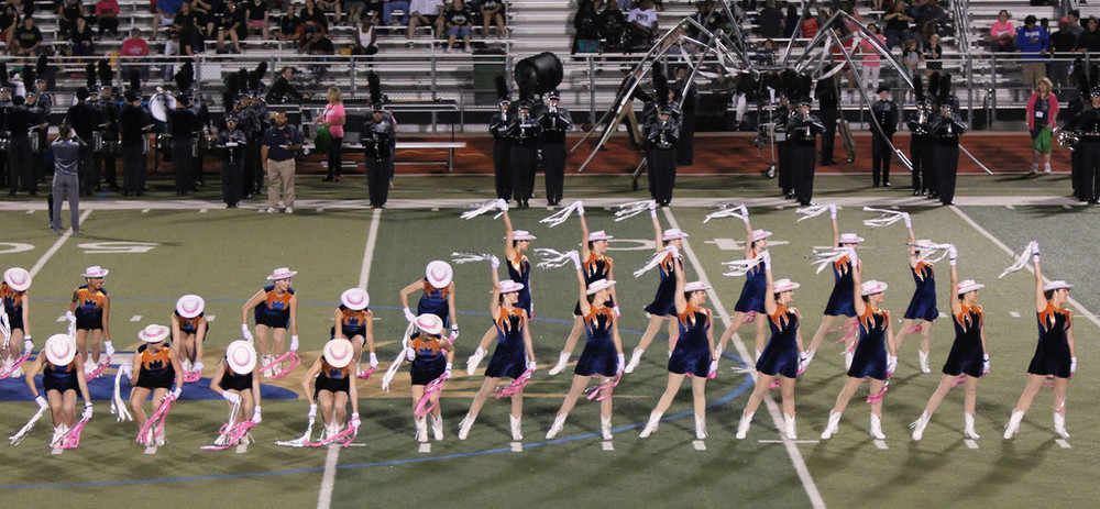 Pink Out Oct 10 2014_15328264759_l.jpg