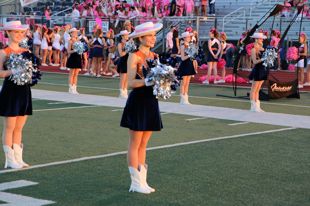 Pink Out Oct 10 2014_15328283829_l.jpg