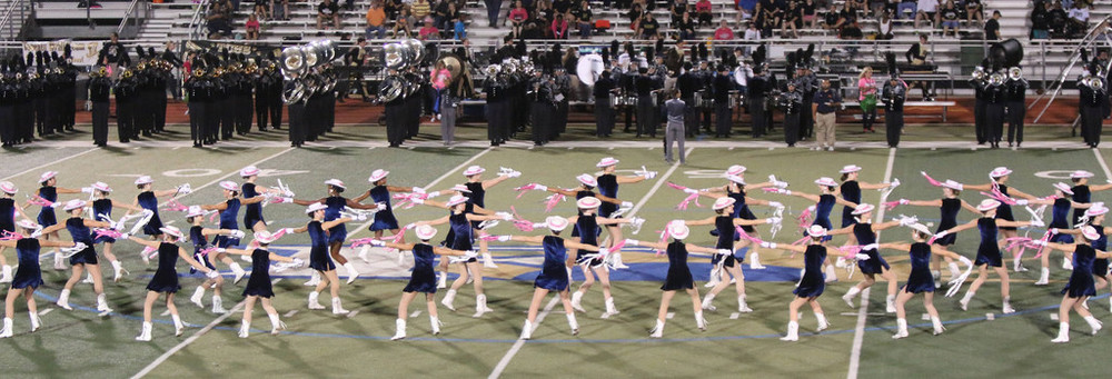 Pink Out Oct 10 2014_15328428690_l.jpg
