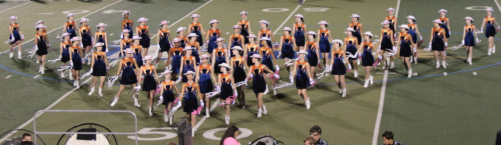 Pink Out Oct 10 2014_15328579927_l.jpg