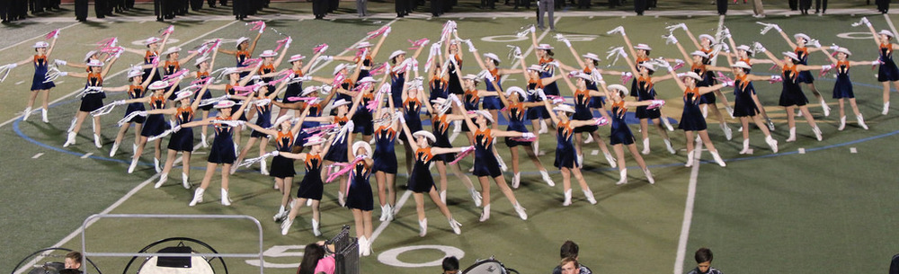Pink Out Oct 10 2014_15328581397_l.jpg