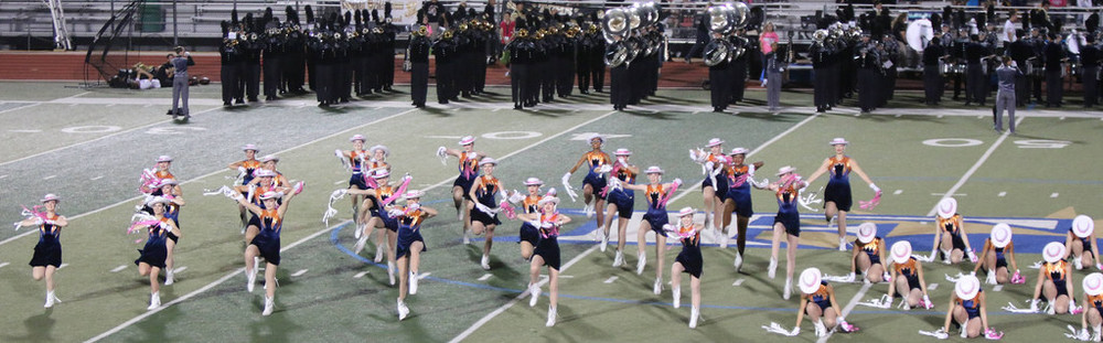 Pink Out Oct 10 2014_15328586027_l.jpg
