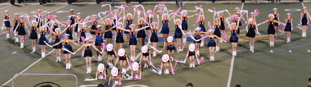 Pink Out Oct 10 2014_15491992966_l.jpg