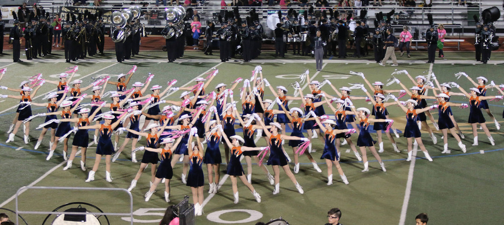 Pink Out Oct 10 2014_15491991626_l.jpg