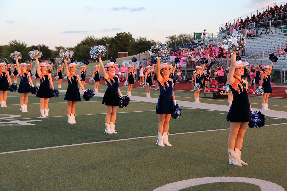 Pink Out Oct 10 2014_15492015786_l.jpg