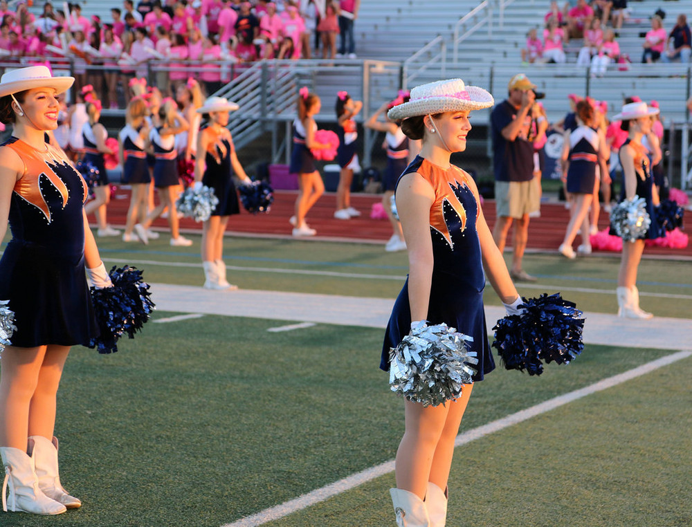 Pink Out Oct 10 2014_15492018076_l.jpg