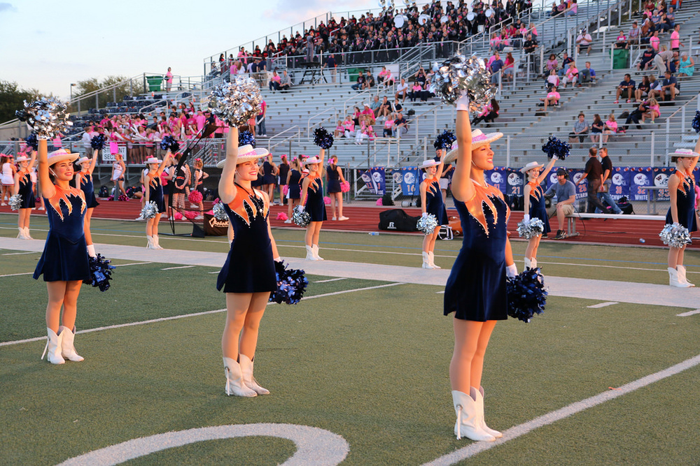 Pink Out Oct 10 2014_15492016226_l.jpg
