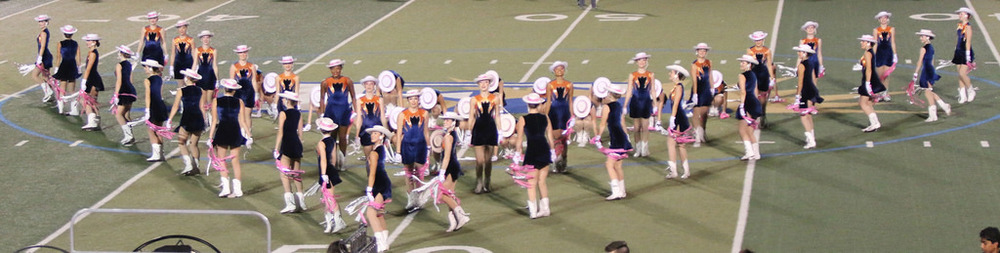 Pink Out Oct 10 2014_15514767232_l.jpg