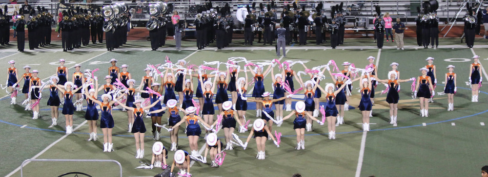 Pink Out Oct 10 2014_15515169305_l.jpg