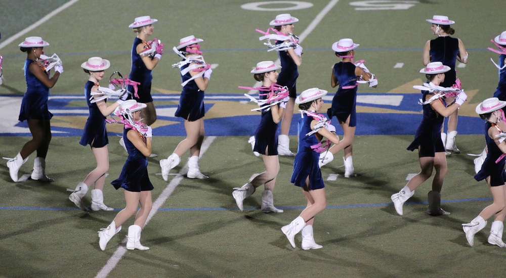 Pink Out Oct 10 2014_15515171255_l.jpg