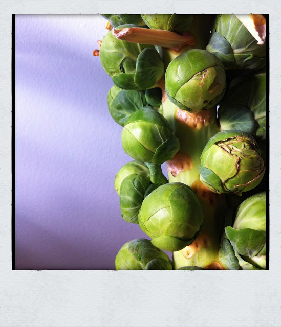 brussel+sprouts+3.jpg
