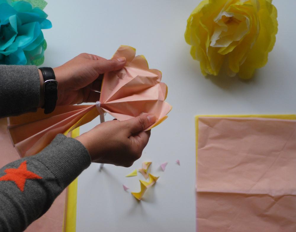 Tissue Paper Fanning.jpg