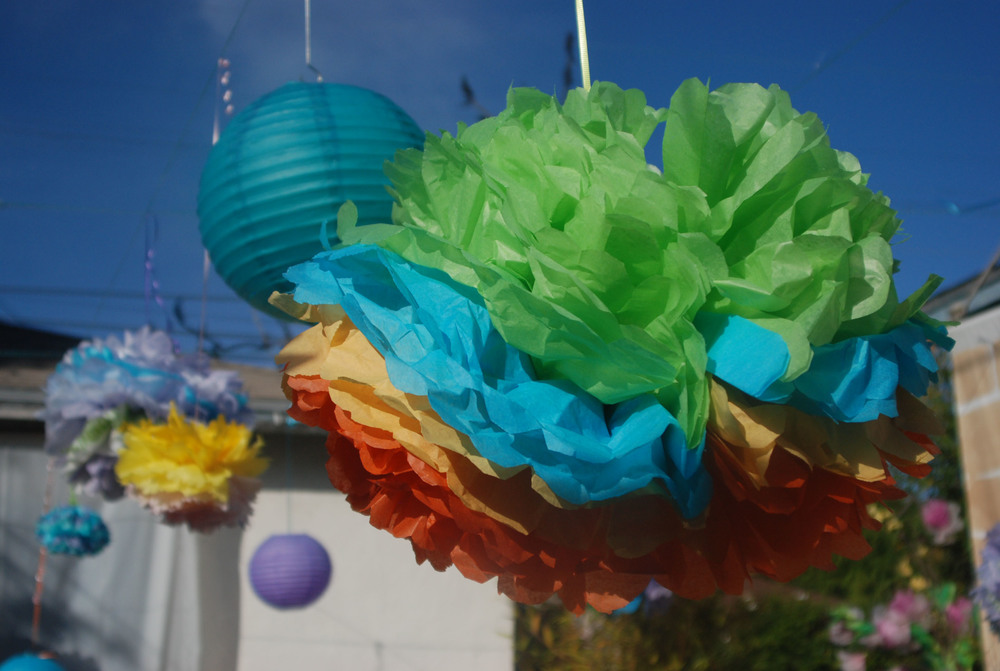 Hanging Tissue Pompoms.jpg