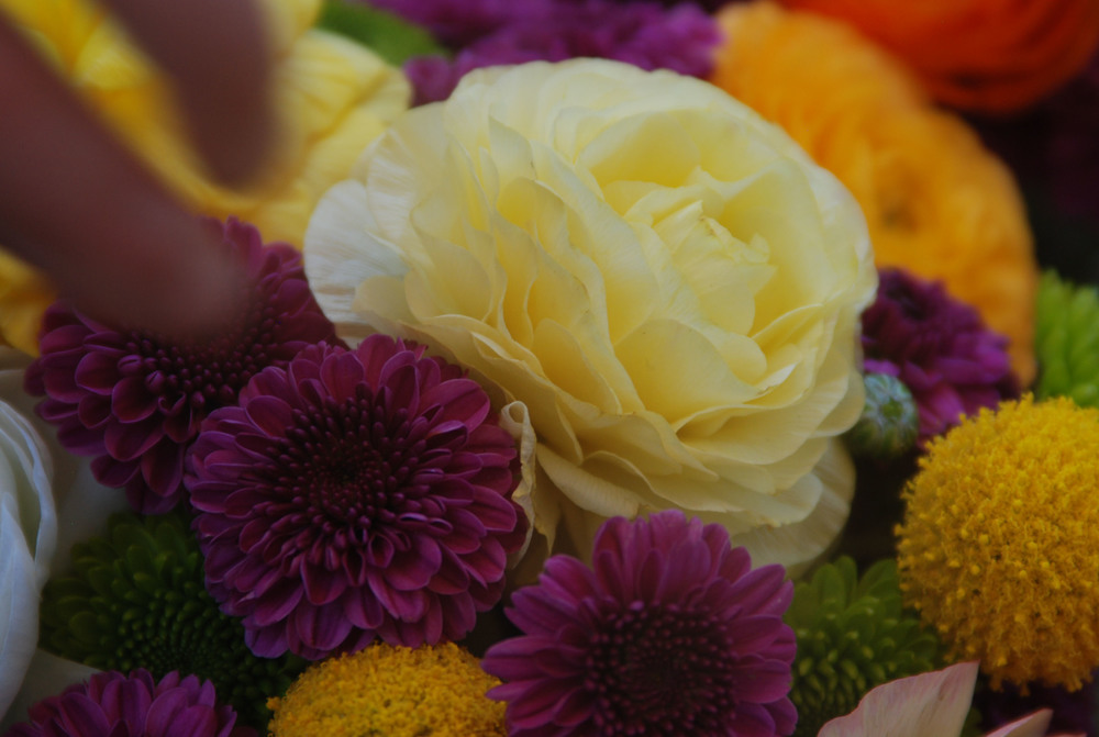 Flowers Close-up.jpg