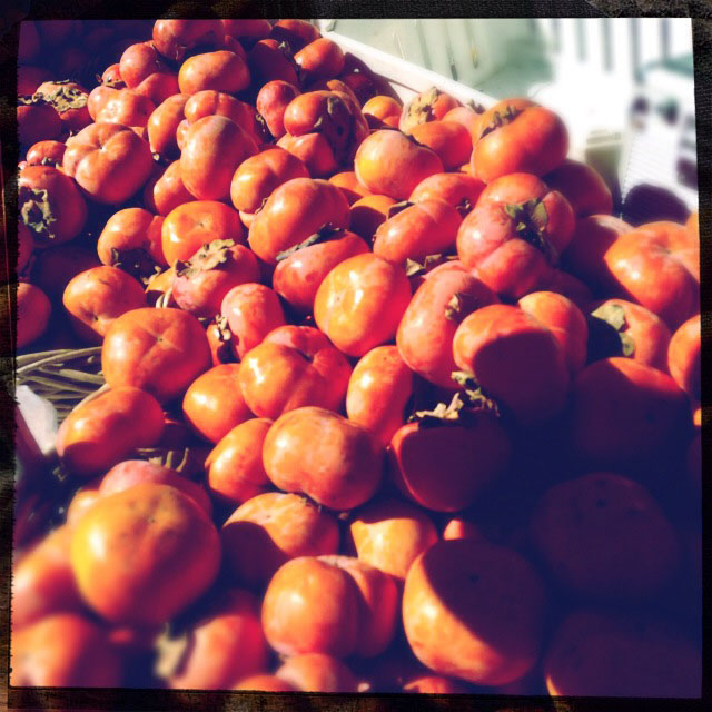 Persimmons for days. Can't wait to try a recipe with these.
