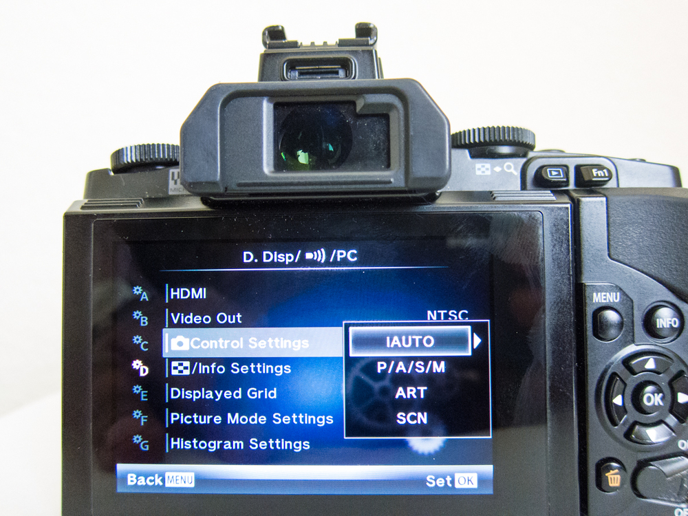 Camera Control Settings in Gear D Menu