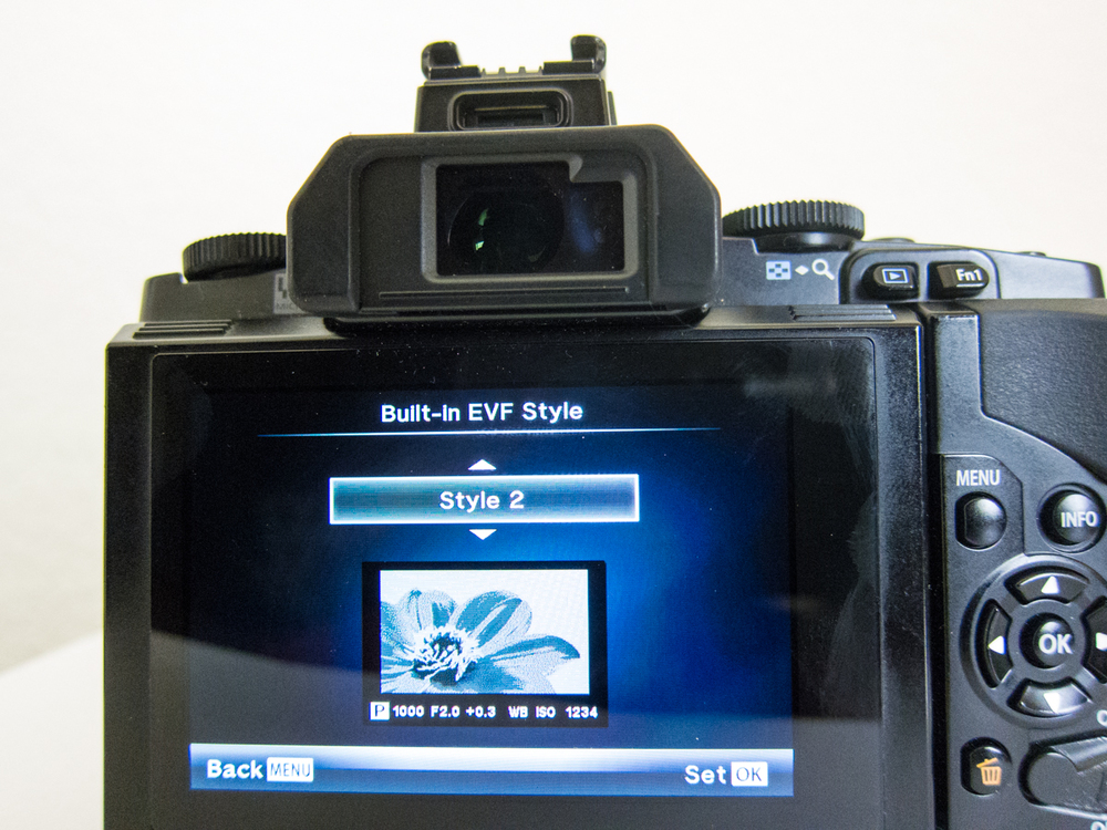 EVF Style 2