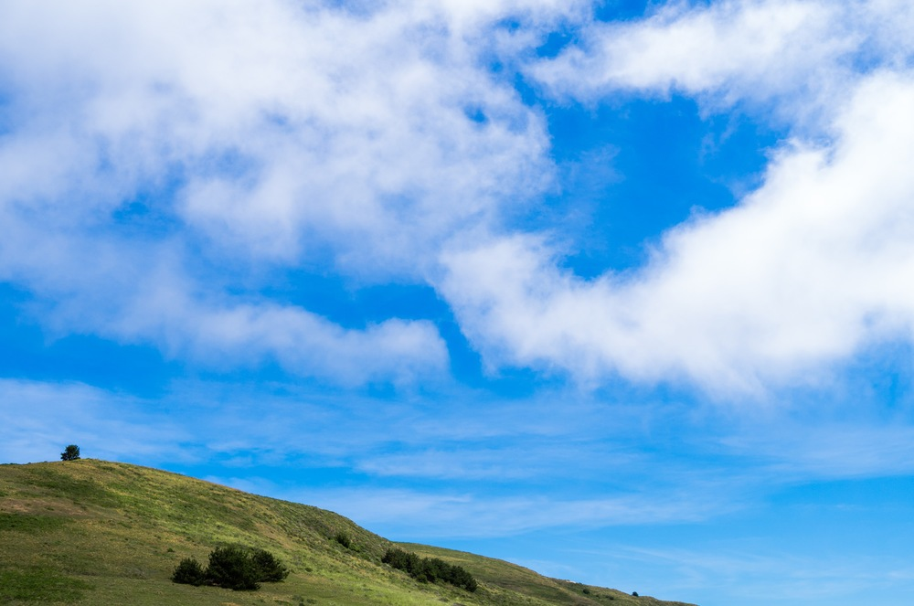 Leica X2 - Point Reyes Hill