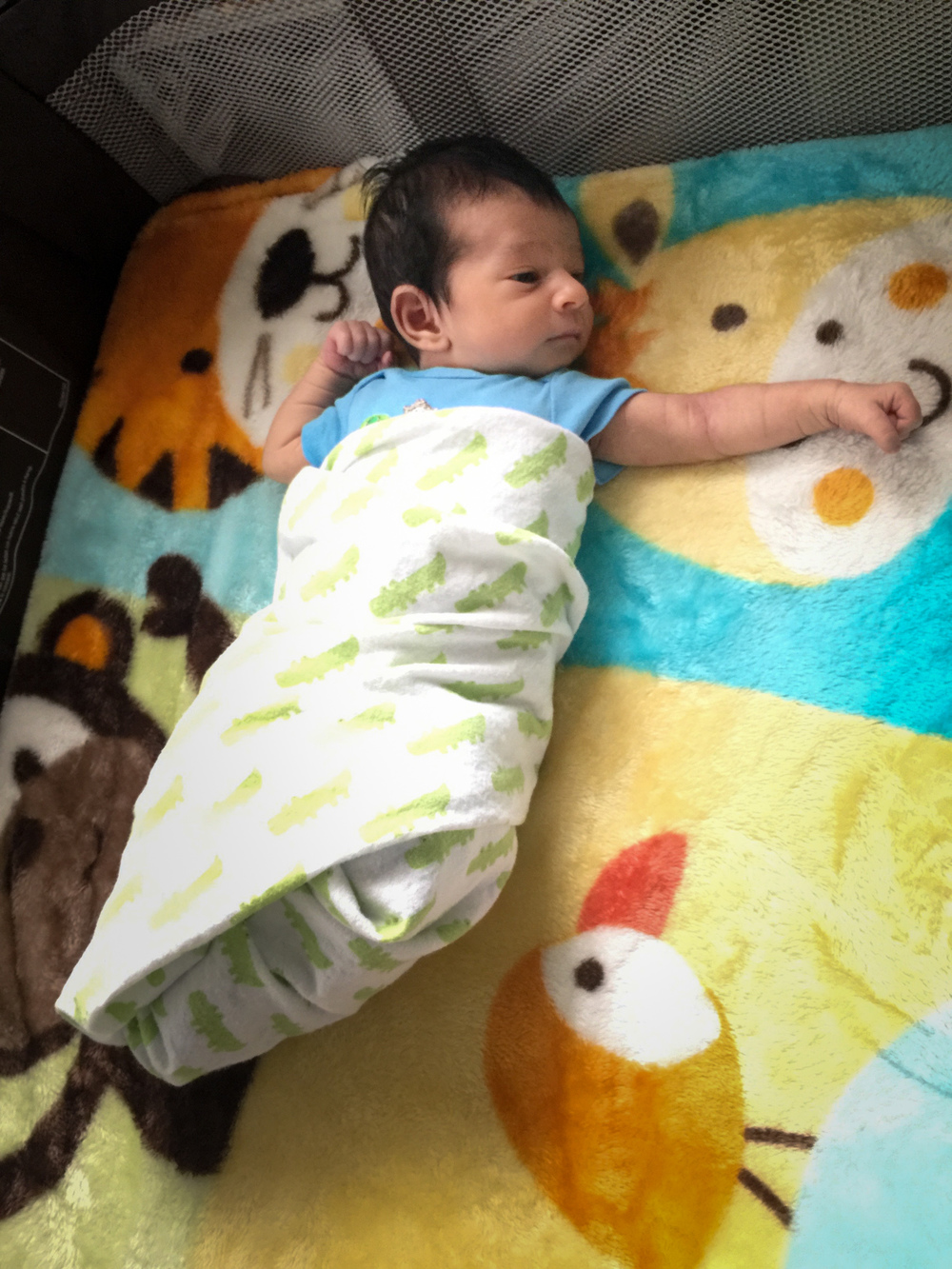 2015-06-27_07-05 Arjun's First 10 Days-0134.jpg