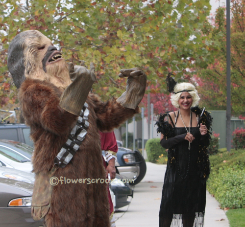 I love that Wookiee