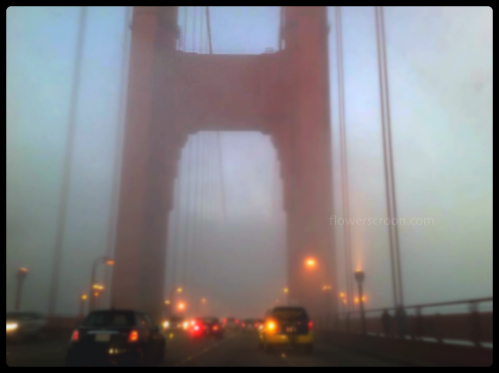 Fog on the Golden Gate Bridge