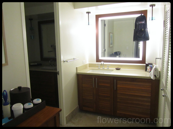 Sink with hidden fridge, closet to the right
