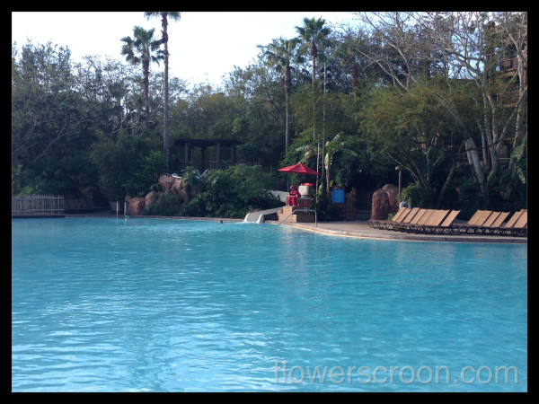 Big pool with fun waterslide