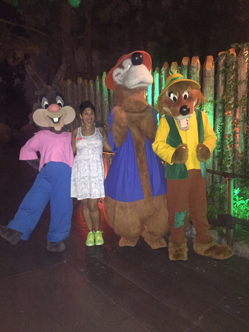 brer-fox-brer-bear-brer-rabbit-disneyland.jpg