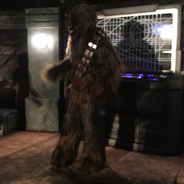 chewbacca-star-wars-half-2016.jpg