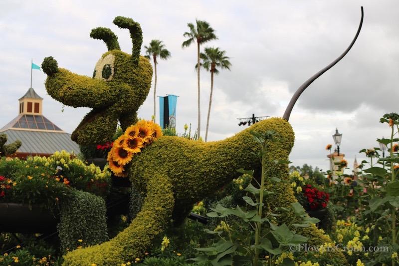 epcot-international-flower-and-garden-festival-pluto.jpg