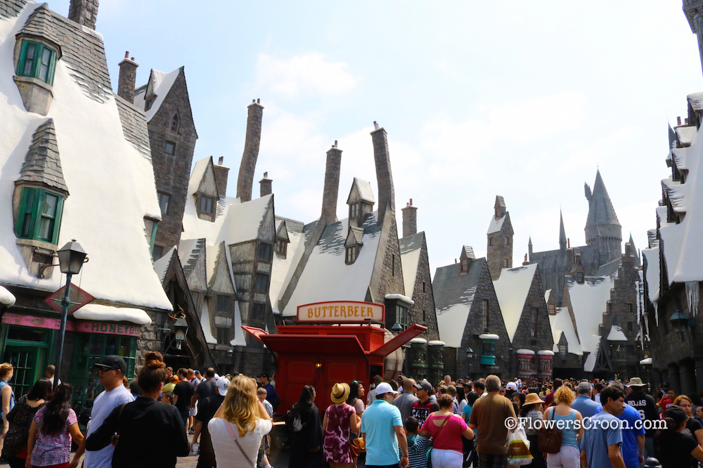 Muggles and Wizards enjoy Hogsmeade