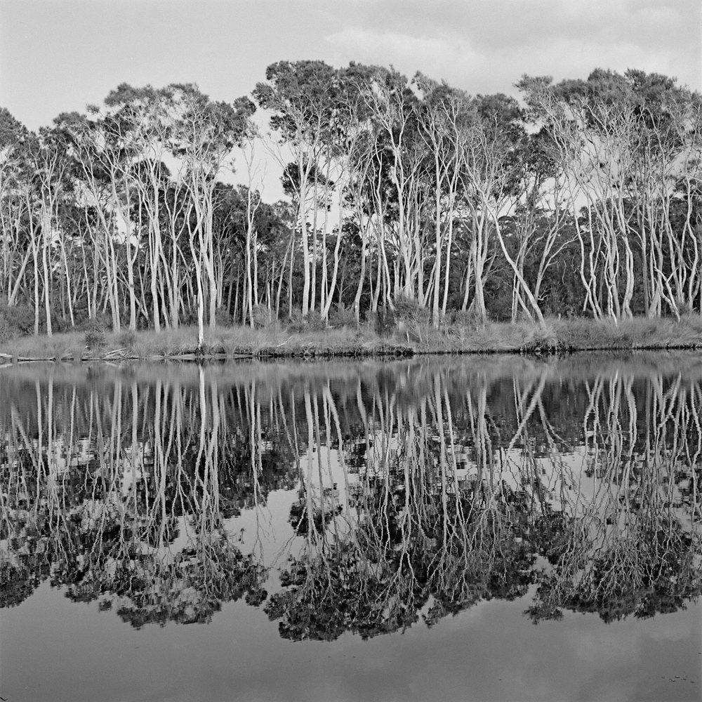 Warren-Hinder-Bawley-Point-NSW-Sth-Coast.jpg