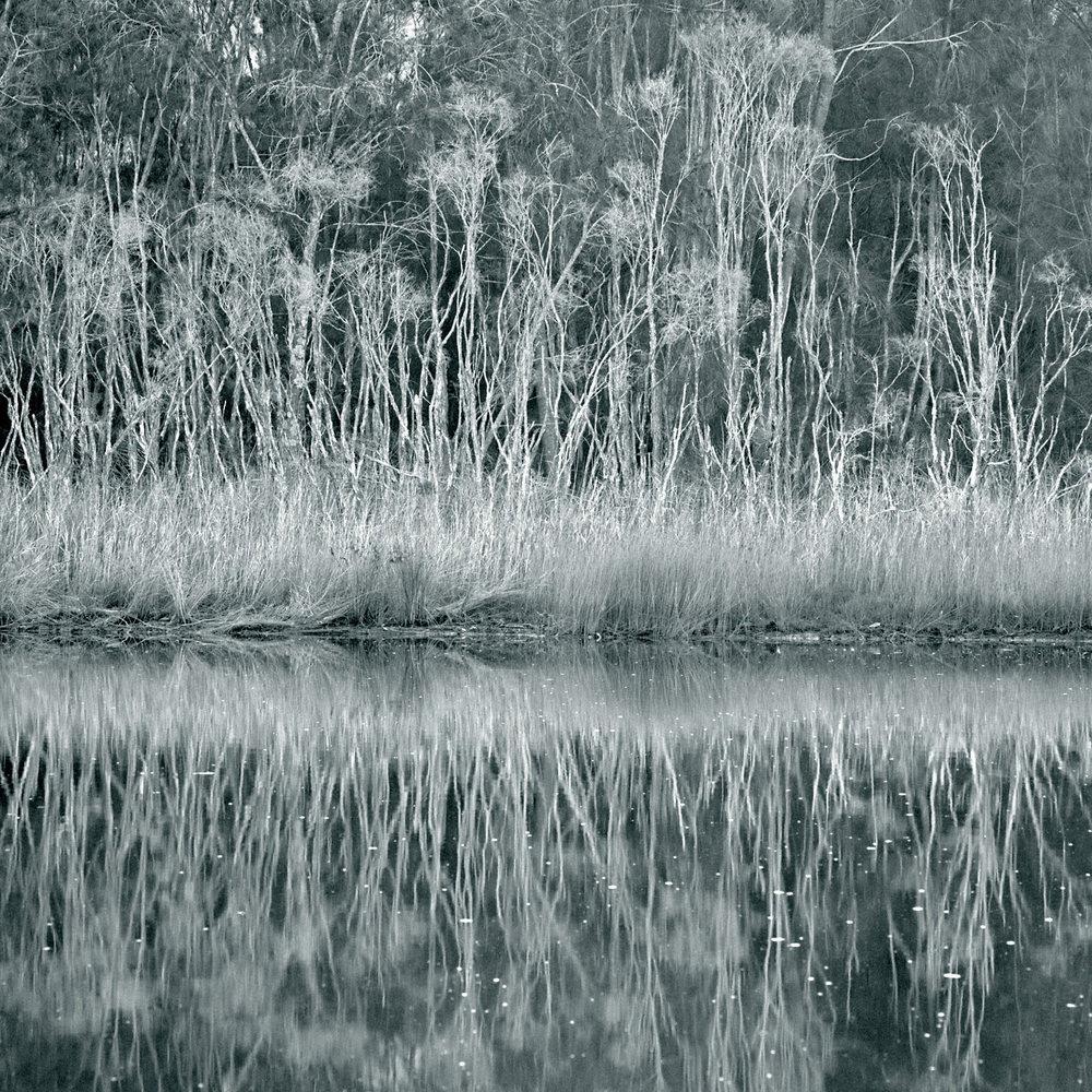 Warren-Hinder-Fishermans-Paradise.jpg