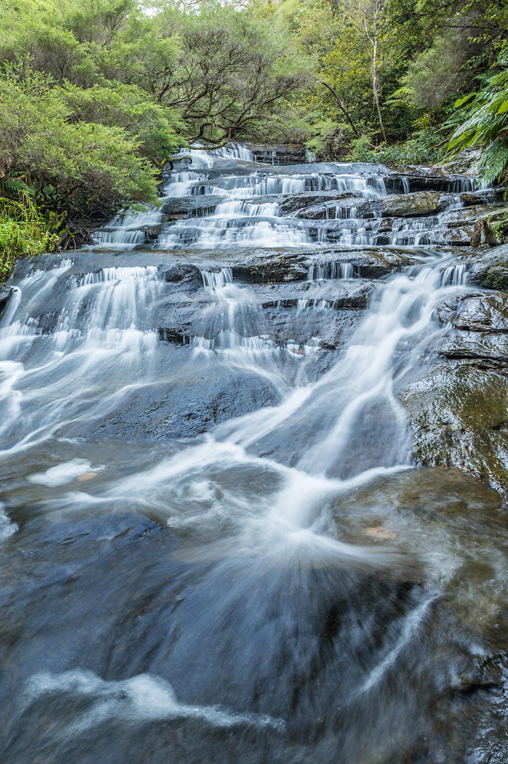 Warren-Hinder-Upper-Cascades-Leura-Cascades.jpg