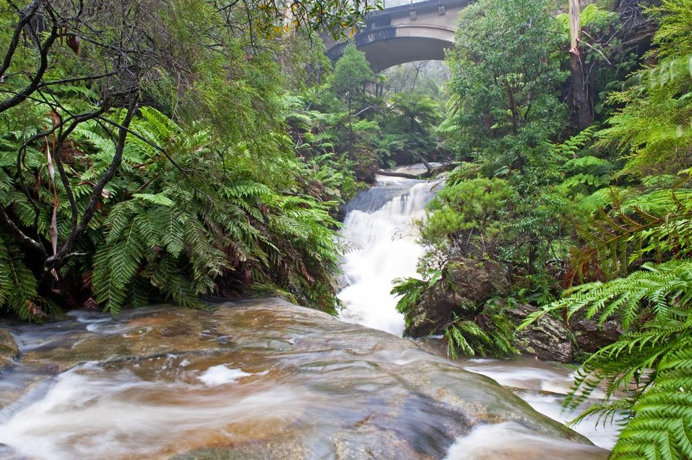 Warren-Hinder-LR-Leura-Cascades-with-Bridge.jpg