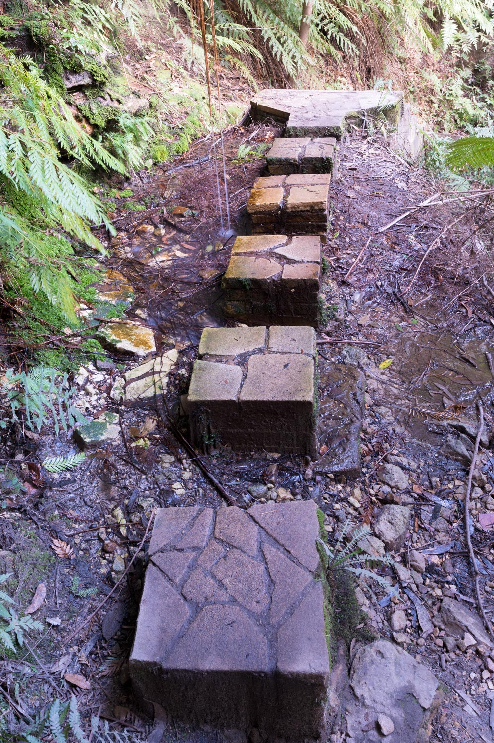 Warren-Hinder-Gordon-Falls-Path-Detail-detail.jpg