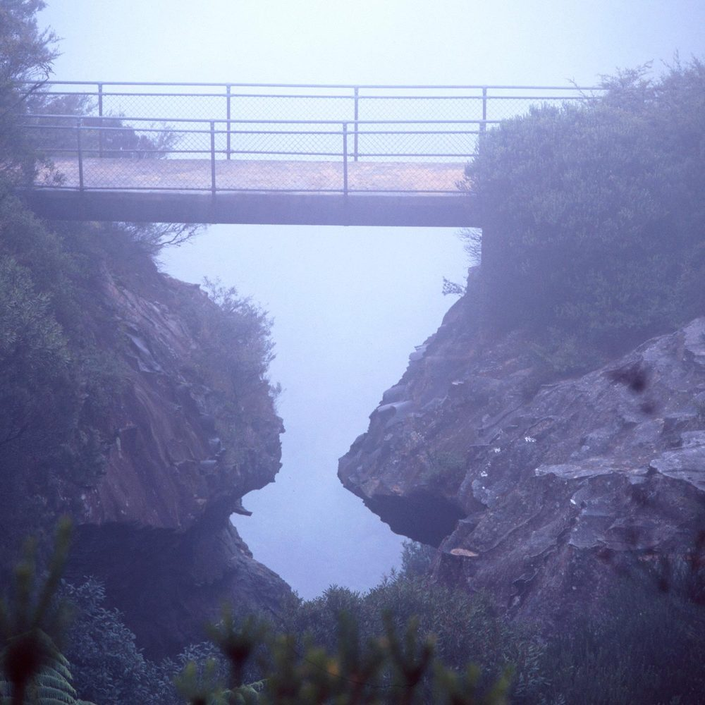 Warren-Hinder-LR-Prince-Henry-Alternate-View-Bridge.jpg