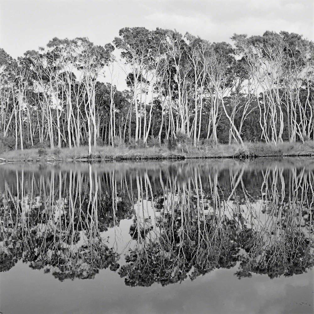 Warren-Hinder-LR-Bawley-Point-NSW-Sth-Coast.jpg