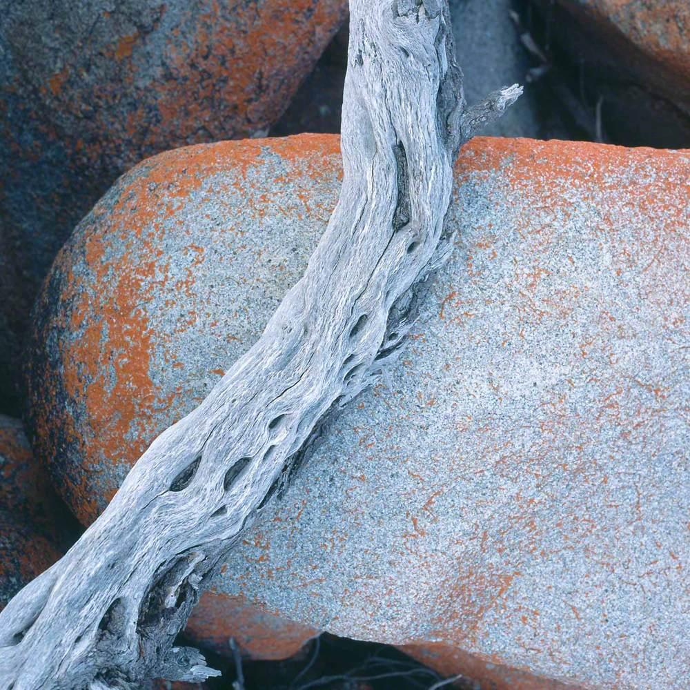 Warren-Hinder-LR-Granite-and-Driftwood.jpg