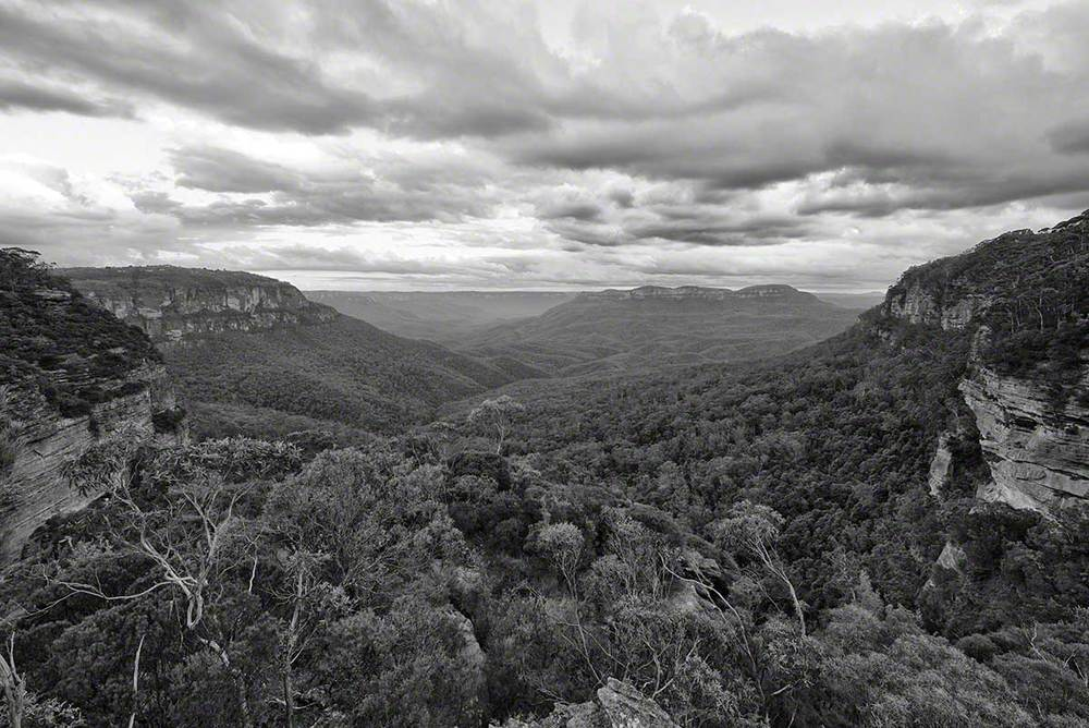 Warren-Hinder-Copyright-2013-Katoomba.jpg