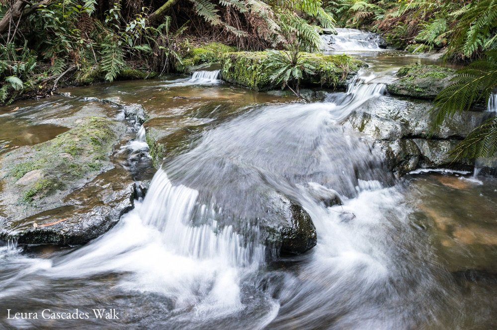 Warren-Hinder-stream-detail-Leura-Cascades.jpg
