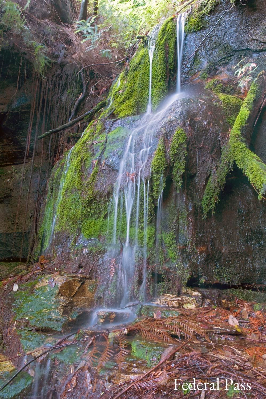 Warren-Hinder-Federal-Pass-Hidden-Falls.jpg