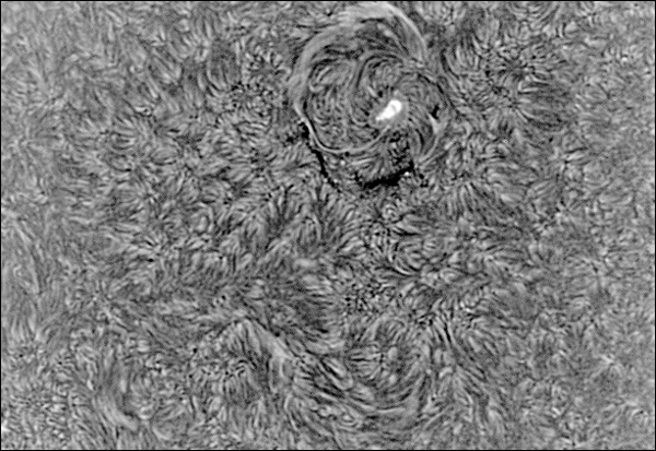 Final-Negative-BW-Sun-25June20130001Now2.jpg