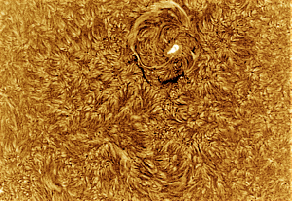 Final-Negative-Sun-25June20130001Now2.jpg