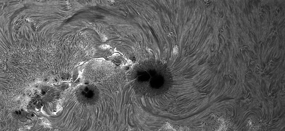 Sunspot1944-9Jan2014-bw.jpg