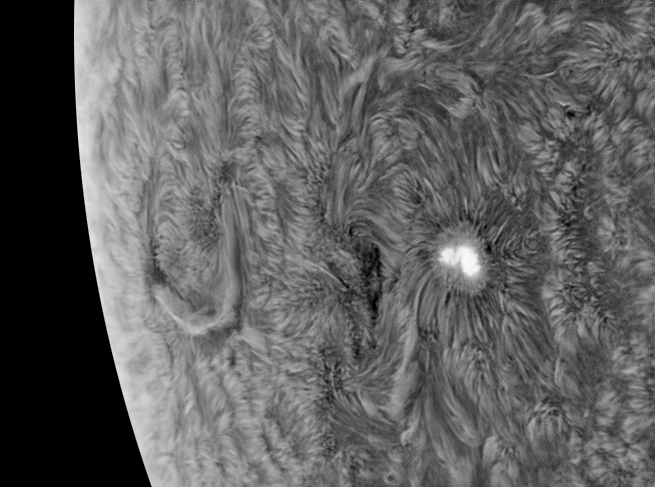 Sunspot10Jan2014InrtdBW.jpg